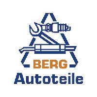 Berg Autoteile Kunden Referenz netx consult
